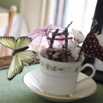Fairy Houses, Tea Party and Crafts